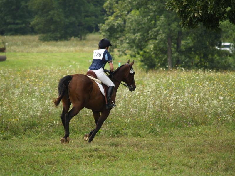 Former TMB horse with his current owner/TMB student, competing at a local event